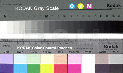 gray scale chart
