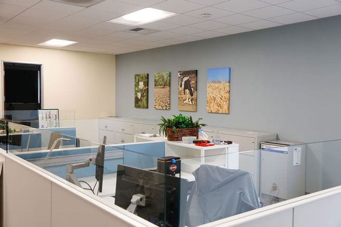 commercial decor with wall art
