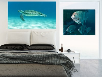 printing underwater photos on canvas