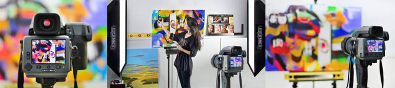 camera for reproducing large art on canvas